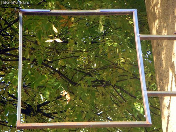 Реклама осенних листьев