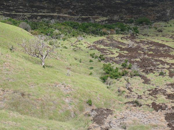 Склоны вулкана Масайя