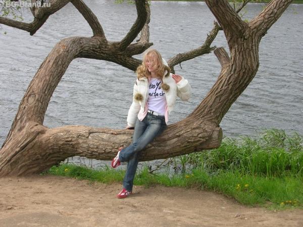 Мир. Сидя на этом дереве, загадываем желание