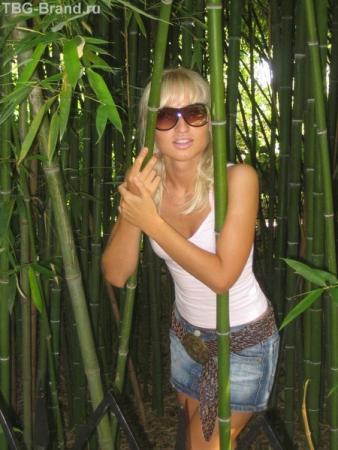 затерялась в тростнике-бамбуке)