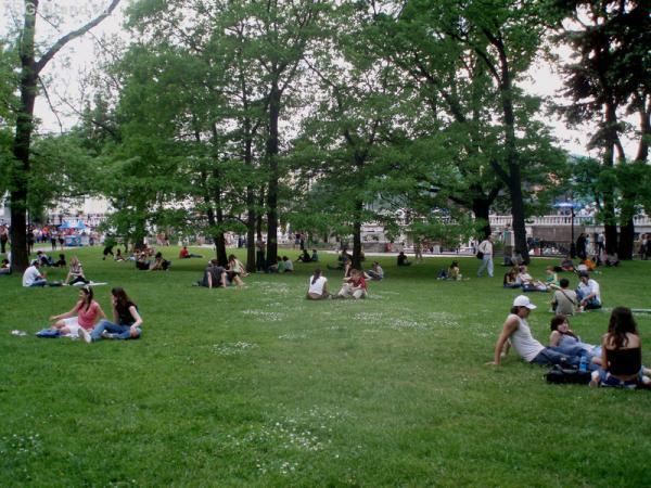 Май в Александровском саду