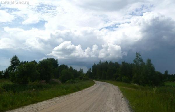Грунтовая дорога в лугах