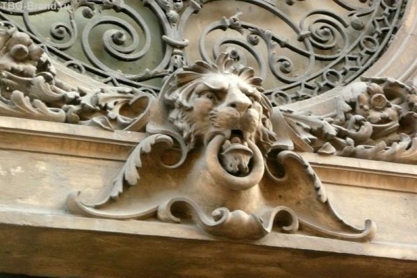 Городские львы