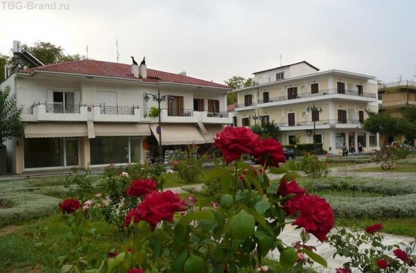 Пунцовые розы на улицах города