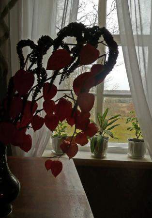 В доме тишина и покой. Свет и музыка включается только при осмотре комнат.