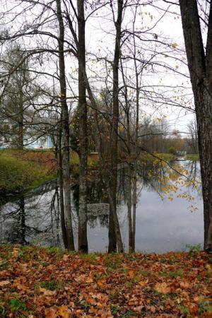 Мы обходим парк и любуемся последними осенними красками.