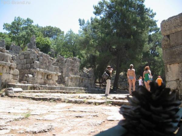 Шишечка среди руин Фазелиса