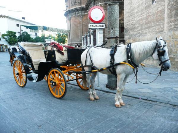 Устали? Не жалейте евро и вперёд по улицам Мадрида
