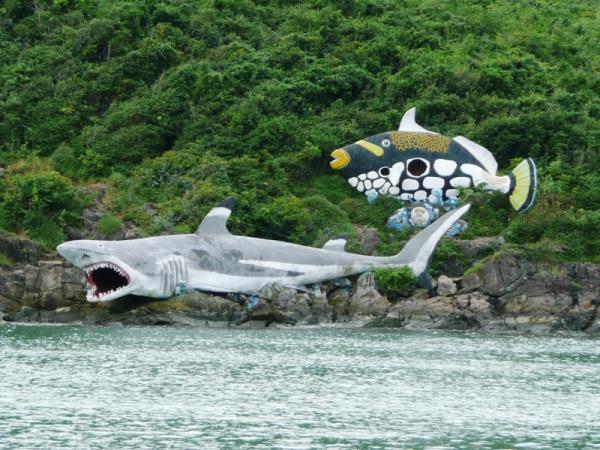 акулы на острове