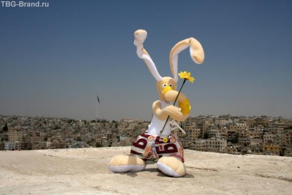 Вовчик в Аммане!