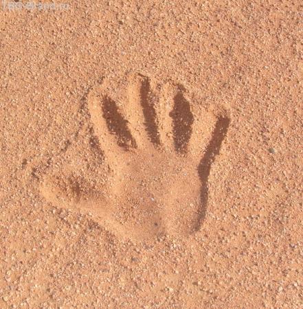 с точки зрения песка...