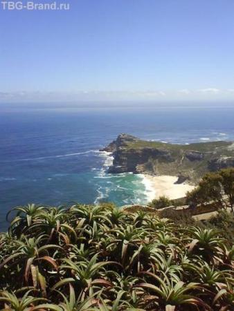 Мыс Доброй Надежды (Cape of Good Hope).
