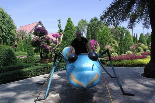 На муравьишке