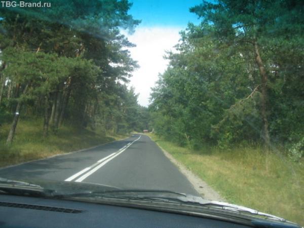 Узкая трасса на Куршской косе