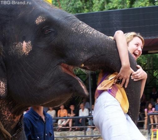 Слоник развлекается