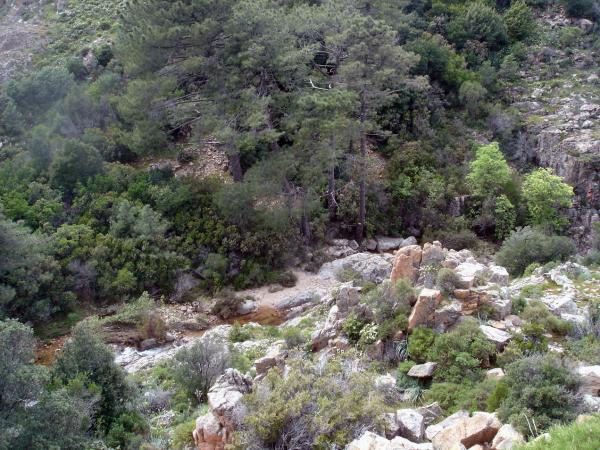вид с горы вниз