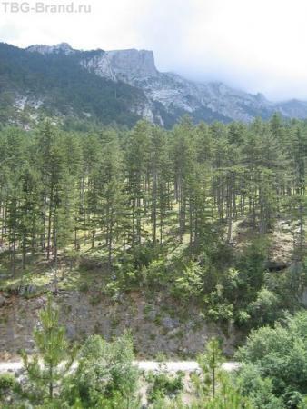 Греция. Гора Олимп