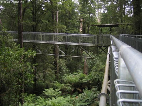 металлические понтоны в лесу
