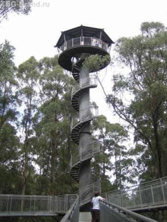 высота башни 45 м.