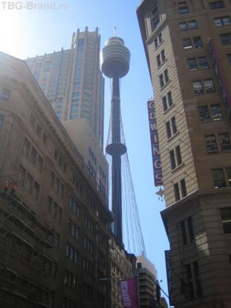 вид на телевизионную башню