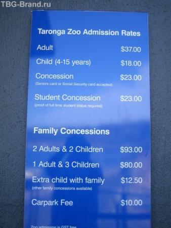 стоимость входа в зоопарк. всевозможные варианты цены