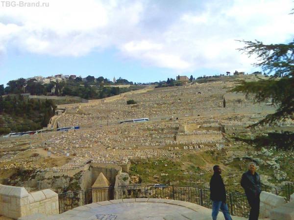 Самое известное кладбище в мире