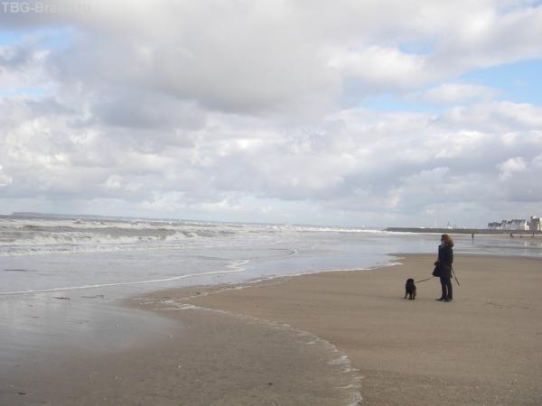 Ла Манш прибывает - приливная волна на 9 метров покроет сушу