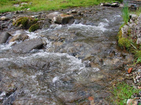 Воды Аскатки