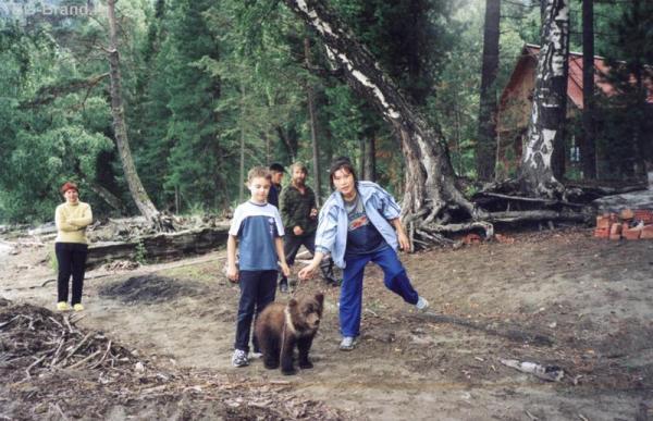 А вот и медведи...