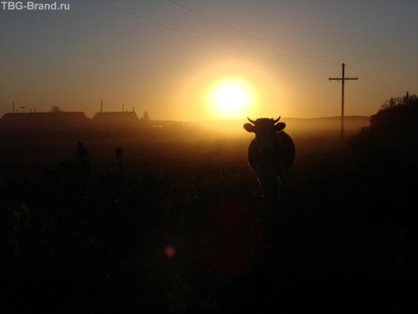 Закат в Колывани