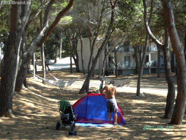 Гамаки, палатки