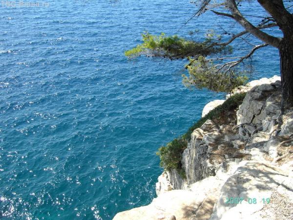 Чистые воды Адриатики