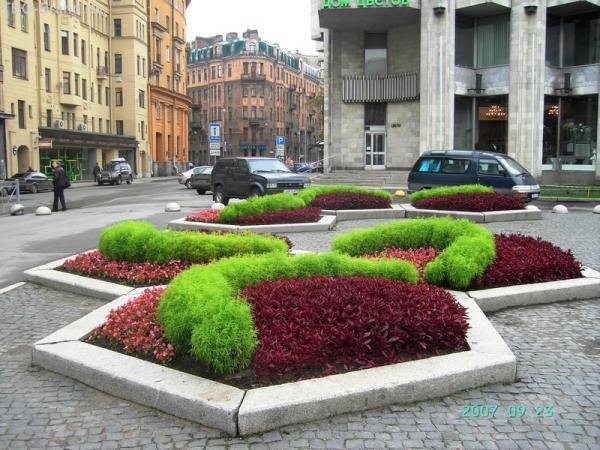 Цветочные композиции у фонтана