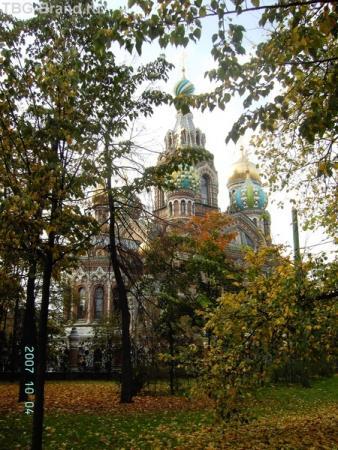Спас-на-крови из Михайловского сада