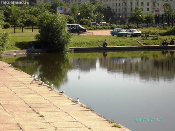 8 Среднерогатский пруд