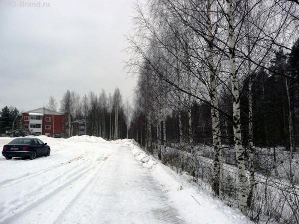 Такие русские финские березы :)