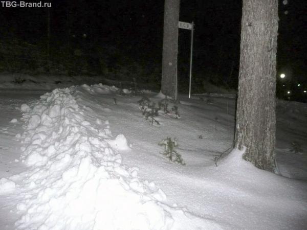 Давно забытый ослепительно белый снег