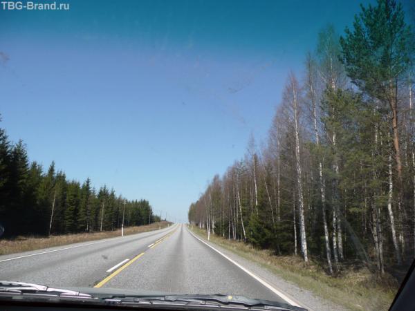 Саботаж финской природы - май, солнце, тепло - а деревья все еще со слабым намеком на листочки...