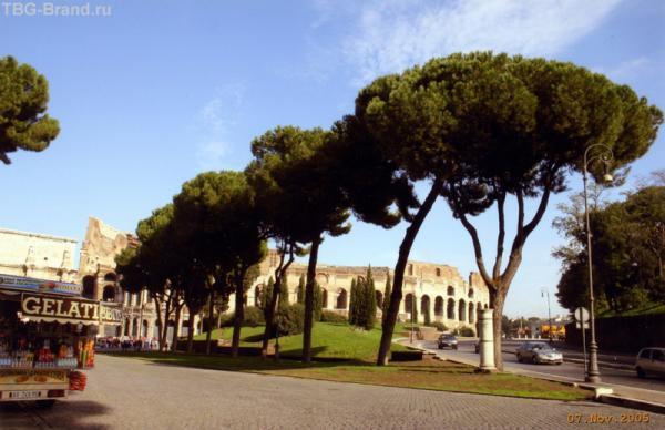 От Колизея к Палатину