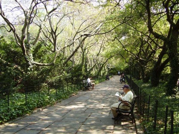 На аллеях старого парка