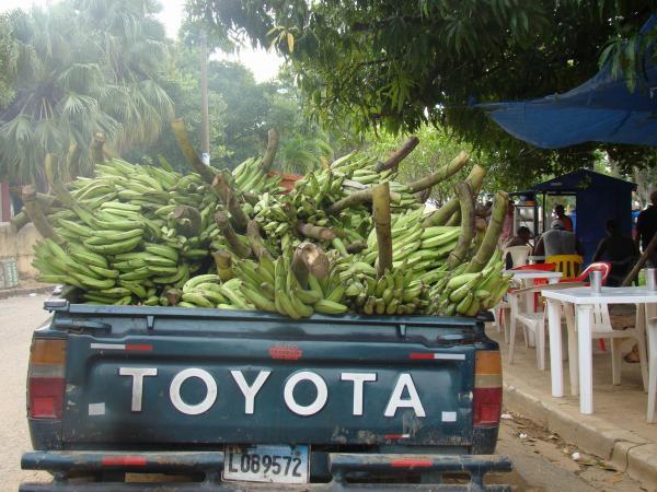 Банановое счастье (Самана, Доминикана, остров Гаити)