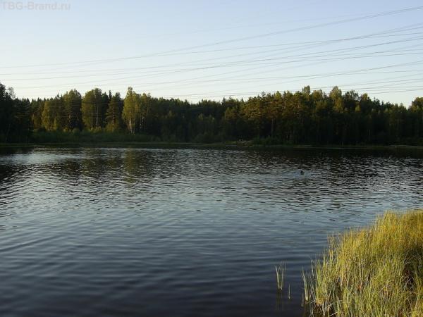 Озеро в пригороде