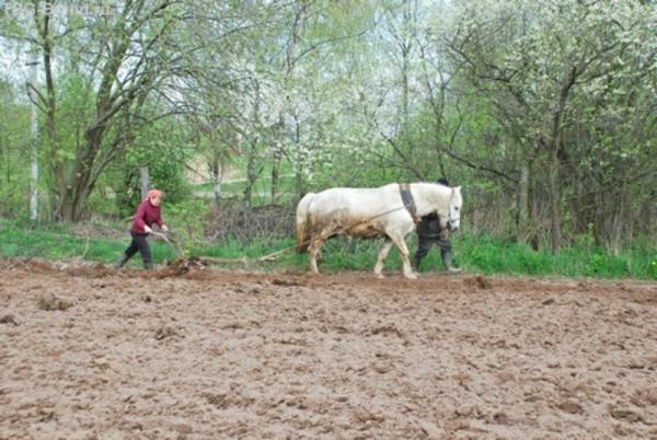 есть женщины в Белорусских деревнях