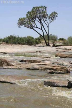 Река Галана