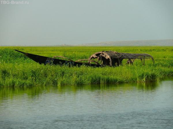 Река разливается на множество проток. Кажется, что лодки плывут просто по траве.