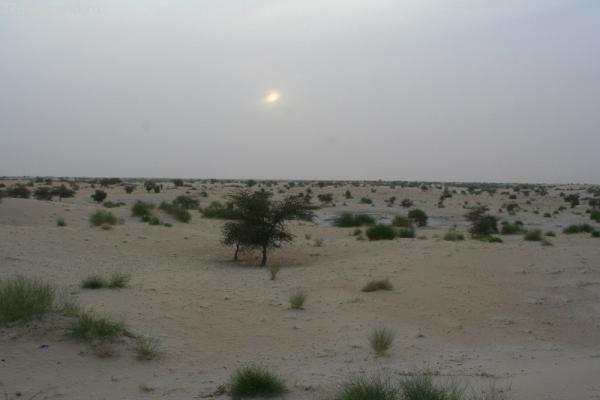 Отправляемся в пустыню