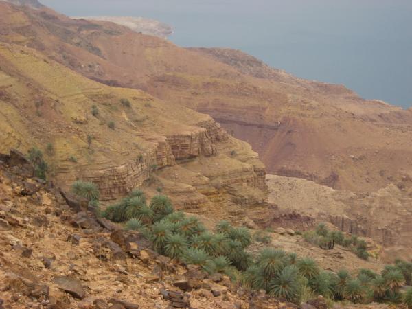 Виды по пути к горячим источникам Маин. Мёртвое море.
