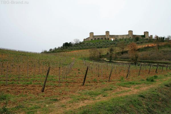 Монтериджони и окрестные виноградники