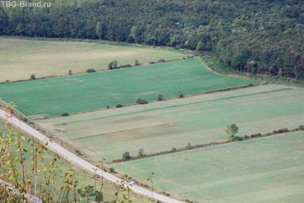 приметы осени на скрижалях земледельца