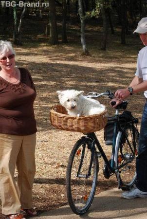 велосипедисты - другие люди